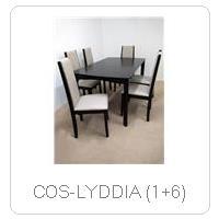COS-LYDDIA (1+6)